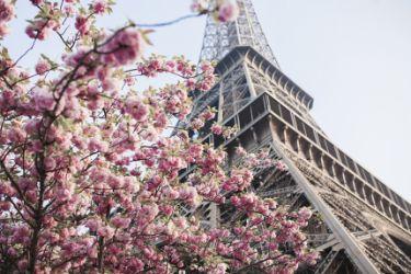 პარიზი 31.03.20 -02.04.20